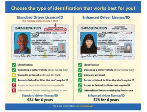 Examples and features of standard driver license and enhanced driver license.